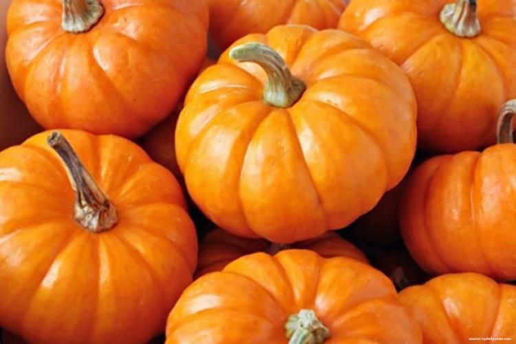 Pumpkin Spice for Your Face: 3 Fall DIY Recipes for Glowing Skin Through This Transitional Season
